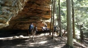 Visit Chapel Cave By Horseback On This Unique Tour In Ohio