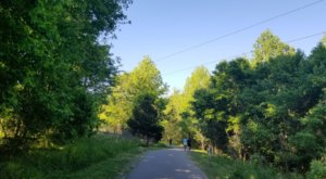 Walk, Cycle, Or Run The Trail At The Four Mile Creek Greenway In North Carolina