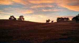Spend The Day Hiking At Deer Creek Hills Preserve, A Working Cattle Ranch In Northern California