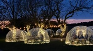 Sip Wine In An Igloo This Winter At Windmill Creek Vineyard & Winery In Maryland