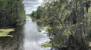 You Can See For Miles At The End Of The Bayou Coquille Trail In Louisiana