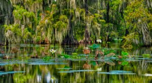 Here Are The 8 Most Peaceful Places To Go In Louisiana When You Need A Break From It All