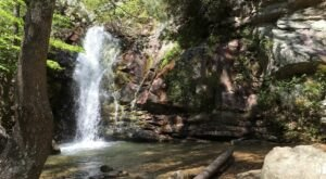 In 2021, Take These 12 Incredible Alabama Hikes, One For Each Month Of The Year