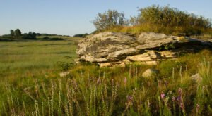 Nachusa Grasslands In Illinois Has 3,800 Acres Of Prairie, Woodlands, And Wetlands For Outdoor Enthusiasts