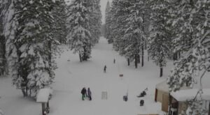 Explore The Majestic Winter Scenery This Season At Mt. Shasta Nordic Center In Northern California