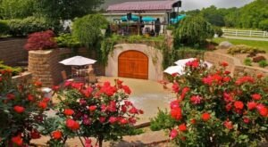 Harmony Hills Vineyards Has An Underground Wine Cave That Will Be Your New Favorite Attraction In Ohio