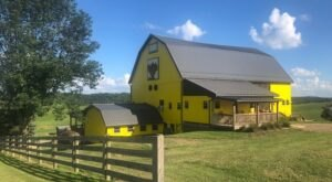 Taste Some Of The Best Wines In Ohio Along The Three Rivers Wine Trail
