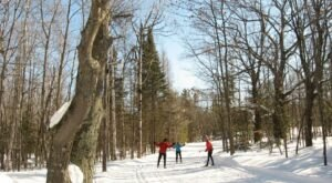 Cross-Country Ski Along Lighted Trails At Swedetown Recreation Area In Michigan
