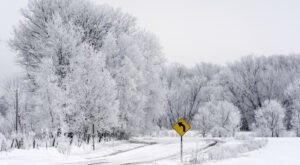A Natural Phenomenon, Rime Ice, Has Been Popping Up In Maine And It's Breathtaking