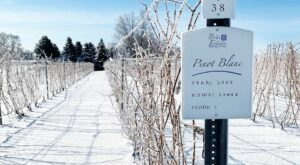 Spiked Hot Cider Awaits When You Explore The Winter Trail At Brys Estate Vineyard In Michigan