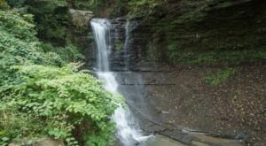 Fall Run Trail In Pennsylvania Is A 1.4-Mile Out-And-Back Hike With A Waterfall Finish