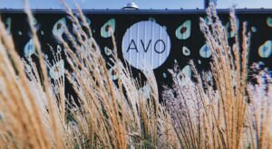 Start The New Year Off Right With A Healthy Meal From Avo, A Health Food Restaurant In Nashville