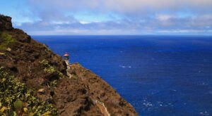 The Makapu'u Lighthouse Trail Might Just Be The Best Place To See Humpback Whales In Hawaii