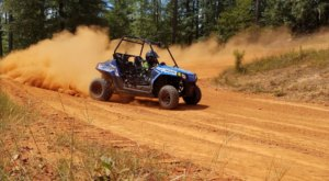 Rent An ATV In South Carolina And Go Off-Roading Through The Sandhills Of The Palmetto State