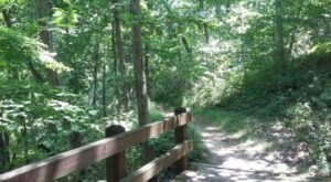 The One-Of-A-Kind Trail In Missouri With Footbridges And Wildflowers Is Quite The Hike
