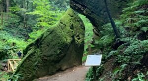 The Conkle's Hollow Gorge Trail In Ohio Is A 1.2-Mile Out-And-Back Hike With A Waterfall Finish