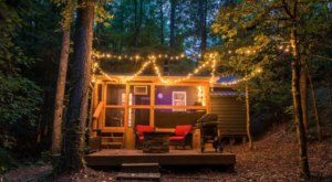 The One-Bedroom Mystic Moonlight Cabin In Georgia Is A Dreamy Escape Into Nature