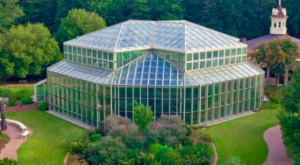 Spend A Magical Afternoon At Cecil B. Day Center, Georgia's Largest Butterfly House