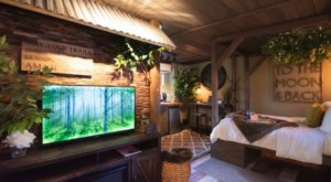 Spend The Night In This Forested Treehouse-Themed Room In Florida