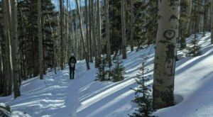 The Nambe Lake Trail Will Show You A Completely New Side Of New Mexico