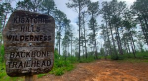 The Endlessly Beautiful Backbone Trail In Louisiana Is Ideal For Outdoor Explorers