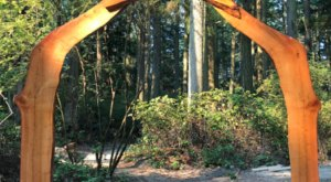 Wander Through The New Sculpture Forest In Washington With A Detailed Self-Guided Tour