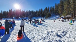 Explore The Majestic Winter Scenery And Go Sledding At Steamboat Gulch In Idaho