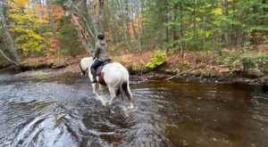 Visit The Forest And Mountains By Horseback On This Unique Tour In Maine
