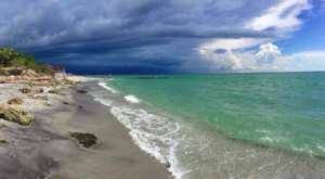 Hunt For Shark's Teeth On The Beautiful And Easy-To-Find Caspersen Beach In Florida