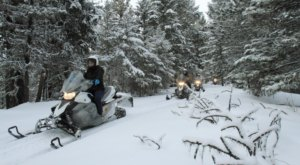 Rent A Snowmobile In Montana And Go Off-Roading Through The Bitterroot And Sapphire Mountains
