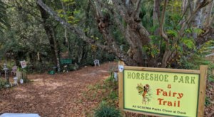 Horseshoe Park Is A Fairy Gnome Wonderland Hiding In Florida And It's Simply Magical