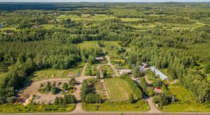 Spend The Night In An Airbnb That's At An Actual Plant Nursery And Vineyard Right Here In Minnesota
