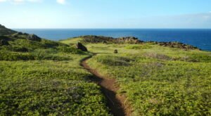 In 2021, Take These 12 Incredible Hawaii Hikes, One For Each Month Of The Year