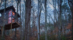 Treetop Hideaways In Georgia Is The Treehouse Getaway Adults Will Love
