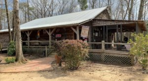 The Only Lizardman-Themed Restaurant In South Carolina, Harry And Harry Too Is One You Shouldn't Pass Up
