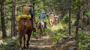 Explore The Absaroka-Beartooth Wilderness By Horseback On This Unique Tour In Montana