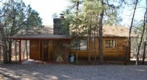 You'll Have A Front Row View Of The Arizona Apache National Forest In These Cozy Cabins