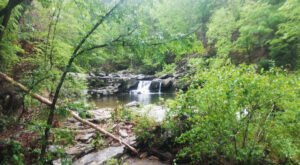 Alabama's Most Refreshing Hike, The Chinnabee Silent Trail, Will Lead You Straight To A Beautiful Swimming Hole