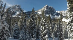 The Champagne Falls Trail In Montana Makes An Easy, Beautiful Winter Hike