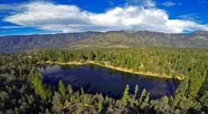 Spend A Peaceful Day Fishing at Jenks Lake in Southern California For Rainbow Trout And Catfish