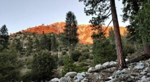 In 2021, Take These 12 Incredible Southern California Hikes, One For Each Month Of The Year