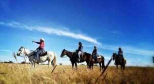 Enjoy The Rolling Hills Of Oklahoma On A Scenic Horseback Ride Led By Arbuckle Trail Rides