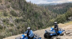 Rent A UTV In Northern California And Go Off-Roading Through The Sierra National Forest