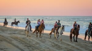 Visit The Ocean By Horseback On This Unique Tour In Virginia Beach