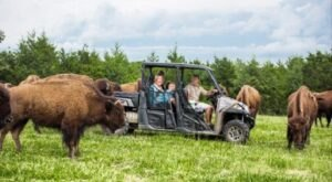 Ride In A UTV In Missouri And Go Off-Roading Through Promised Land Zoo