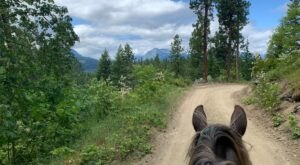 Visit The Cascade Mountains By Horseback On This Unique Tour In Washington