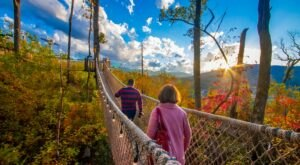 The Anakeesta Amusement And Theme Park In East Tennessee Is Fun For Everyone In The Family