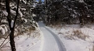 The Winter Trails At Love Creek County Park In Michigan Will Capture Your Heart