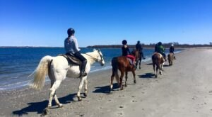 Visit Middletown's Second Beach By Horseback On This Unique Tour In Rhode Island