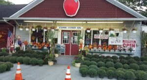 The One-Of-A-Kind Wemrock Orchards In New Jersey Serves Up Fresh Homemade Pie To Die For